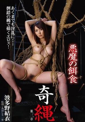 【モザ有】 奇縄 悪魔の餌食 波多野結衣