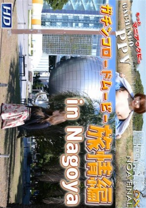 【無修正】 GRM 旅情編 Vol.4 リサ
