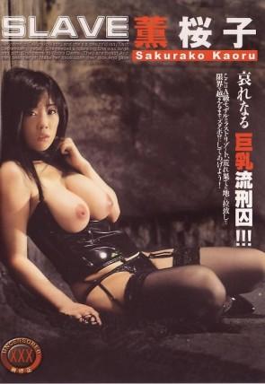 ダルマ Vol.2 : 薫桜子
